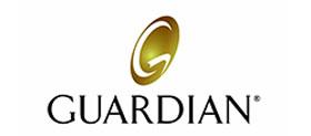 finance-guarian5